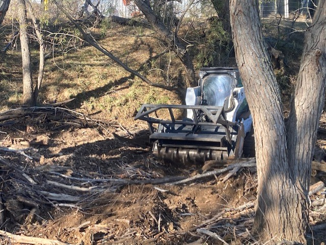 San Antonio River Authority brush removal efforts in Wilson County.
