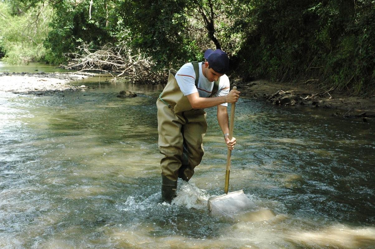 River Authority staff conducting a kick sampling technique