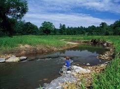 Stream restoration