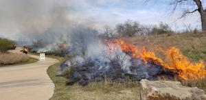 Fire Ecology Prescribed Burning One