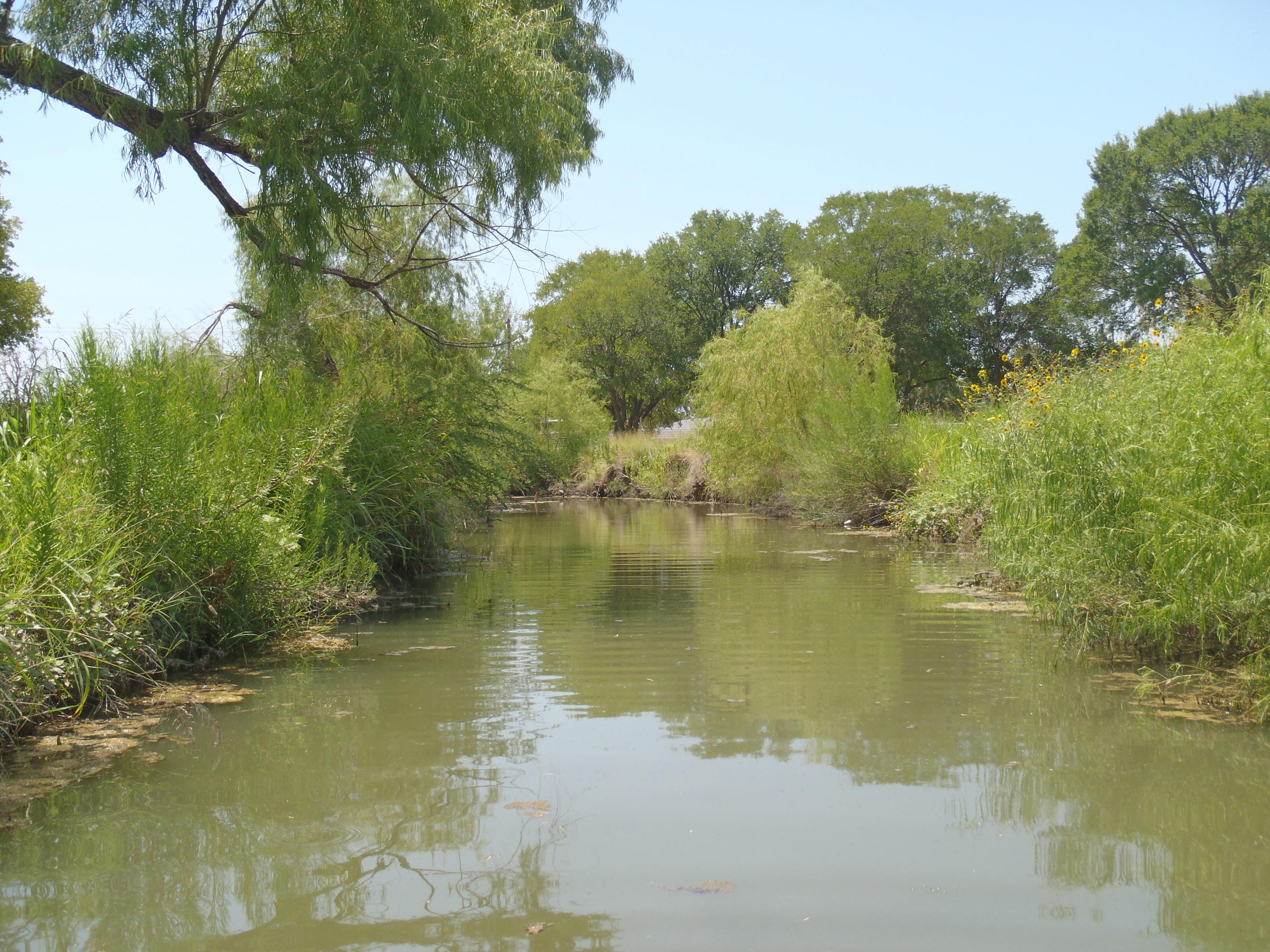 East Salatrillo Creek at Judson ISD