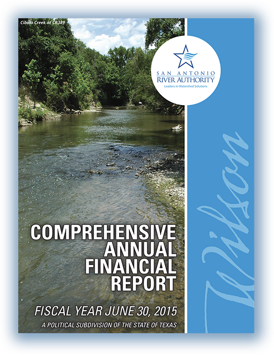 2015 financial report cover
