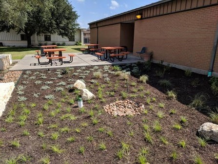 Bioretention feature at Roger E Sides Elementary School in Karnes City.